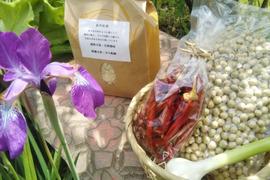 自然栽培の野菜3種類、米1㎏・大豆500g・唐辛子セット