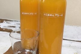 【安心の無添加】農薬使用していないみかんのストレートジュース!500ml2本セット