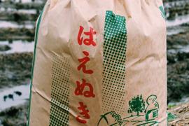 《はえぬき》【白米5kg】【H30収穫】山形県飯豊町産
