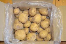 ジャガイモ(デジマ5kg)