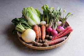 伝統京野菜メイン!食べやすい珍しい野菜も入ります 有機JAS認証季節野菜BOX(8-10品)
