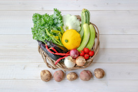【初回限定お試しセット】『まえむき。』の、自然と一緒に育てた旬の野菜セット5~6種類