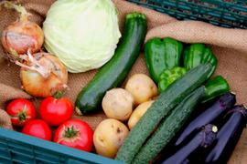 あらい農園野菜BOX〜京都より季節野菜をお届け〜