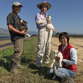 農薬ゼロのひかり農園