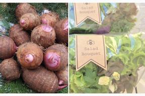 【ホクホク美味しい赤芽の里芋 1kg】と【サラダブーケ2束】のセット