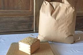 アイガモ米 玄米5kg
