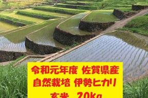【令和元年新米】無農薬!自然栽培!佐賀県産!「伊勢ヒカリ」玄米20kg