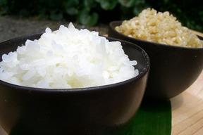 アイガモ米 白米10㎏