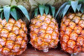 減農薬パイナップル(ピーチパイン) 小玉 3個 【6月出荷開始】