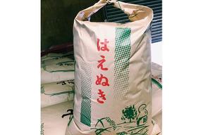 【令和元年新米】【玄米】はえぬき 10kg 山形県飯豊町産減農薬栽培米