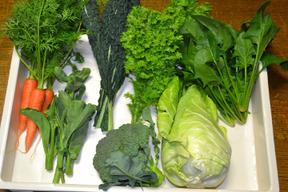 野菜のボックス(中)5~7種類程度