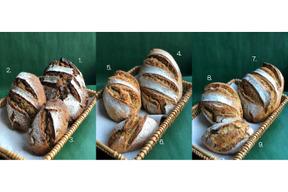 【お好みの商品をお好きな数で注文できます】フルオーダーパンセット:自然栽培小麦のみ使用したパンのフルオーダーセット