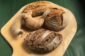 パンセット③:自然栽培小麦のみ使用したハード系パンセット
