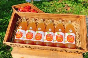 11ぴきのねこのまち さんのへ の りんごジュース 1L × 6本セット