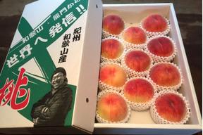 無農薬栽培の「美味しい桃」 / 和歌山県産 / 小箱 (約5〜8個 / 約2kg)