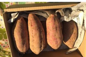 食べごたえしっかり❗️天ぷらに最適❗️『安納芋』2kg