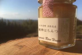 日本蜜蜂の生はちみつ 3瓶セット