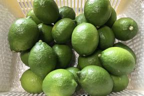 瀬戸内の無人島レモン(3kg/20~25個)