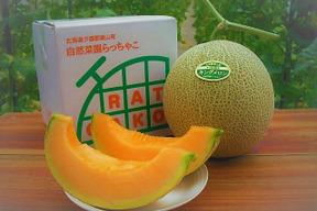 無農薬・無化学肥料のキングメロン 1玉(1.4kg~)