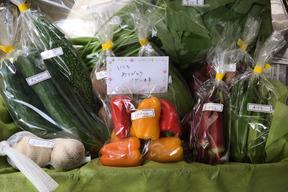 【☆お祝い品☆】野菜ギフトセット