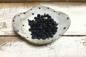 ブルーベリーの原種です。ビルベリー 200g
