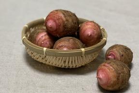 ホクホク美味しい赤芽の里芋 1.8kg