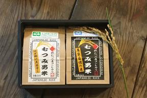 むつみ男米 食べ比べセット