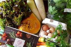 【季節のお野菜】さいのね畑の野菜セット[小]+たまごセット