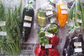 【肥料・農薬不使用栽培】カラダの中から笑顔になる季節の野菜セット(5-6品)