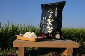 【30年度】学のひのひかり(玄米5kg)