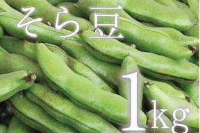 【(予約)5月限定!待ってましたこの季節♪】そら豆(さや付) 1kg