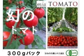 幻の赤い宝石【飯田農園】miuトマト300gパック