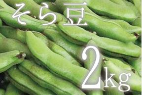 【(予約)5月限定!待ってましたこの季節♪】そら豆(さや付) 2kg