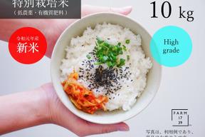 【10kg】旨味もっちり コシヒカリ 特別栽培米 特A 那須産