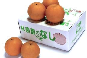 豊水梨 約2.5kg(6〜7玉)
