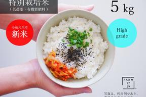 【5kg】旨味もっちり コシヒカリ 特別栽培米 特A 那須産