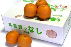 幸水梨(家庭用) 約5kg(12〜18玉)