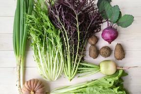 『まえむき。』の、自然と一緒に育てた旬の野菜セット8~10種類