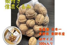 信濃くるみ【Mサイズ】500g(殻付き)