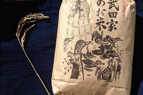 武田家のお米 銀河のしずく 白米 5kg【令和元年産】