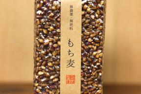 【無農薬・無肥料 自然栽培 天日干し】生命力溢れる もち麦(ダイシモチ)