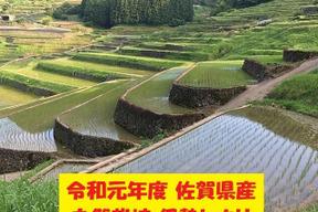 【令和元年新米】無農薬!自然栽培!佐賀県産!「伊勢ヒカリ」玄米15kg