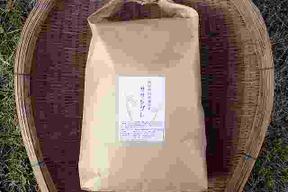 【H29年熟成米】無肥料自然栽培ササシグレ玄米5kg