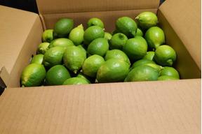 無農薬グリーンレモン10kg
