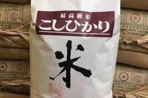 【30年産白米】農薬をつかわないコシヒカリ(石川県産) 5kg