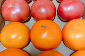 大玉トマト(麗夏)(桃太郎ゴールド)ハーフ&ハーフ3キロ箱セット