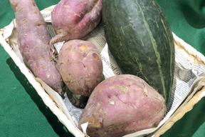 丹波篠山産スイーツ用サツマイモ、カボチャの詰め合わせ