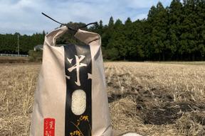 自然栽培のもち米(きぬはなもち)5㎏