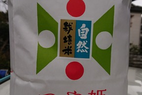 【 玄米・20kg(5kg×4袋) 】米の旨味たっぷり 自然栽培米 つや姫