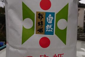 【 玄米・10kg (5kg×2袋)】米の旨味たっぷり 自然栽培米 つや姫